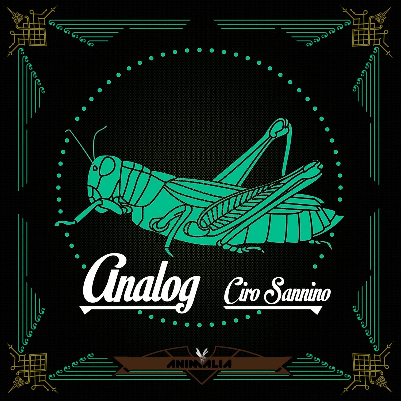 Ciro Sannino - Analog  (Original Mix)