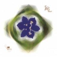 Dsum - Espinas (Original mix)