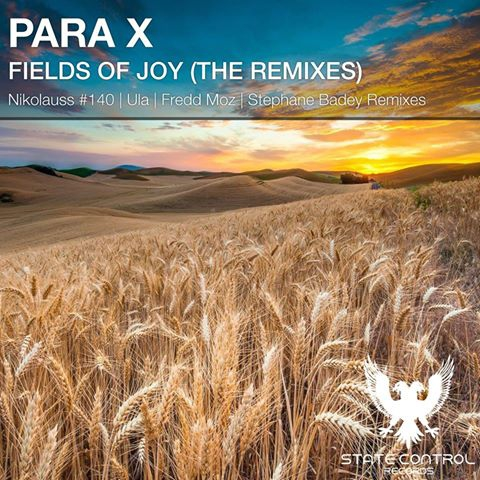 Para X - Fields Of Joy (Ula Remix)