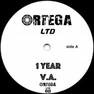 DAVID ORTEGA - Amazing (Original mix)