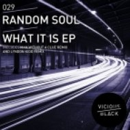 Random Soul - What It Is (Man Without A Clue Remix)