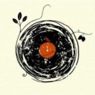 dimedroll - funky rhythm ()
