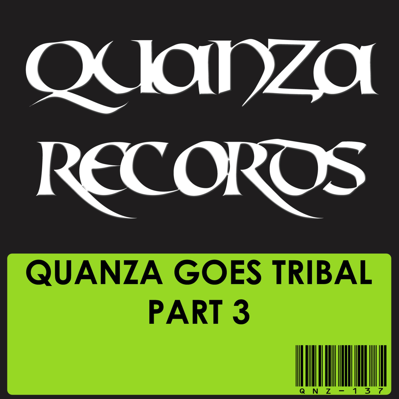 Tamer Fouda - The Tribal Nation (Original mix)