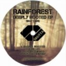 Rainforest - Jericho (Original Mix)