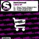 JamLimmat - Playa Tucam (Original mix)
