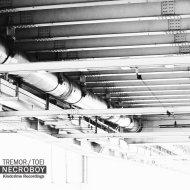 Necroboy - Tremor (Original Mix)