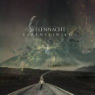 Seelennacht - Lovely Sins (Original mix)