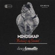 Mindskap - Hold On (Original Mix)