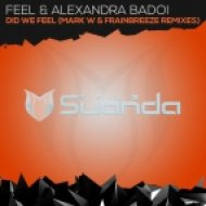 Feel & Alexandra Badoi - Did We Feel (Mark W Remix)