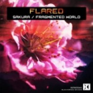 Flared - Fragmented World (Original mix)