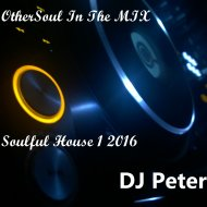 DJ Peter - OtherSoul In The MIX - Soulful House 1 2016 ()