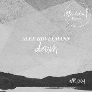 Alex Hoevelmann - Nachtschwalbenflug (Original Mix)