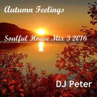 DJ Peter - Autumn Feelings - Soulful House Mix 3 2016 ()