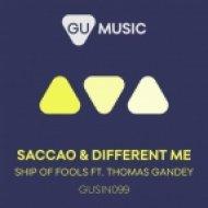 Saccao & Different Me feat. Thomas Gandey - Ship Of Fools (Original Mix)
