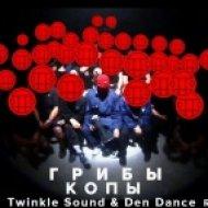 Грибы - Копы (Twinkle Sound & Den Dance Remix) [2016] ()