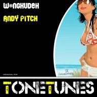 Andy Pitch - Wongkudeh (Original mix)