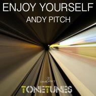 Andy Pitch - Enjoy Yourself (Original mix)