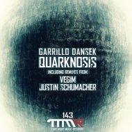 Garillo Dansek - Quarknosis (Repaint)