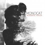 Monocat - Wonderful Person (Mier Remix)