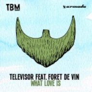 Televisor Ft. Foret De Vin - What Love Is (Extended Mix)