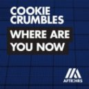 Cookie Crumbles - Where Are U Now (Original Mix)