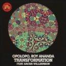 Opolopo & Roy Ananda Ft. Sacha Williamson - Transformation (Namy Remix)