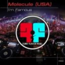 Molecule (USA) - I\'m Famous (Original Mix)