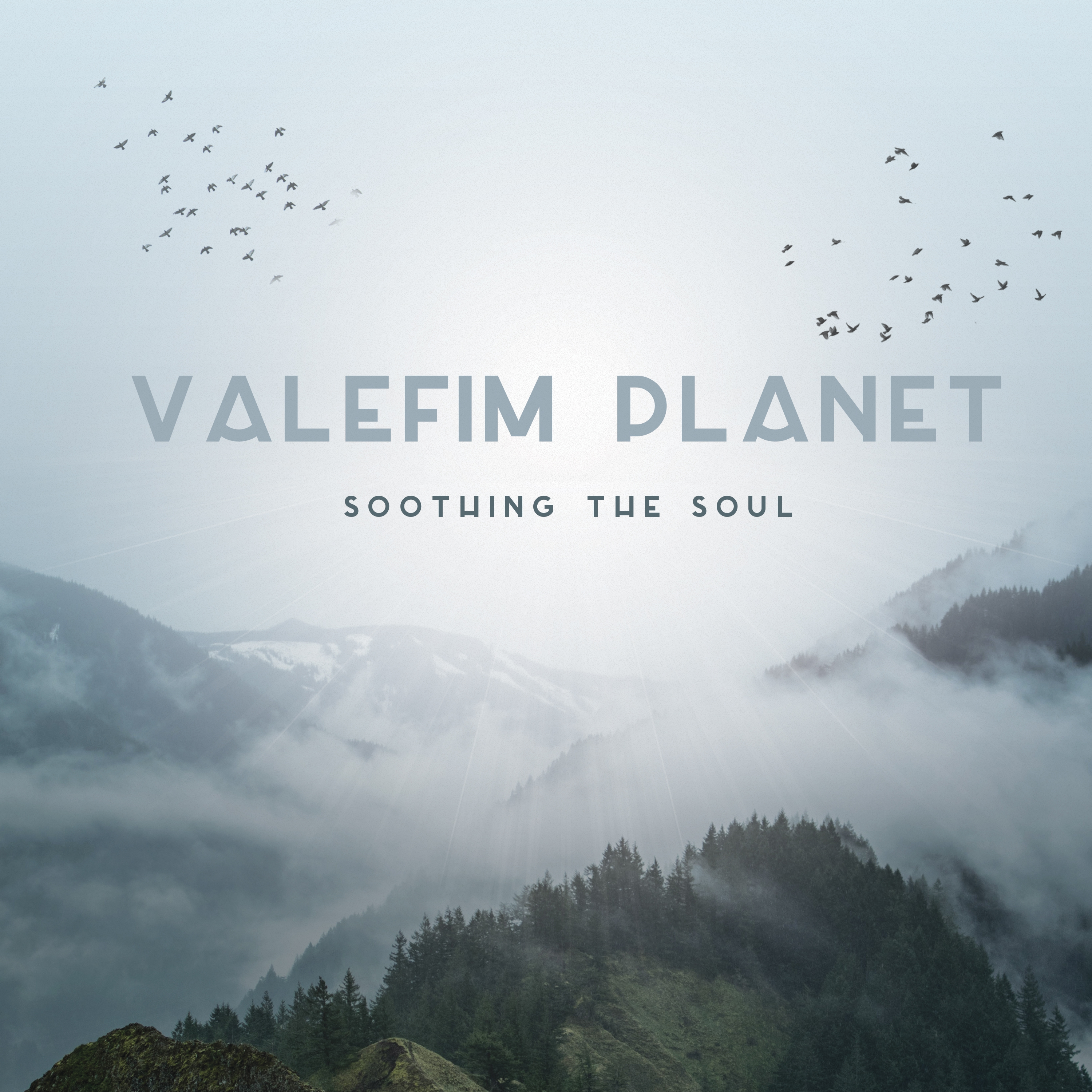 Valefim Planet - Soothing The Soul (Original Mix)