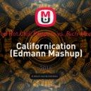 Red Hot Chili Peppers vs. Rich-Mond - Californication (Edmann Mash up) (Edmann Mashup)