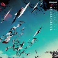 Ryo Nakamura - Mystic Forest (Original Mix)
