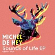 Michel De Hey - Velavive (Original Mix)
