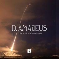 D.Amadeus - Everything (Original mix)