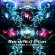 Serenity Flux - Reality Checkpoint (Original Mix)