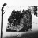 Binary & Dillard - Curve (Original Mix)