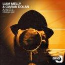 Liam Melly & Ciaran Dolan - A.W.O.L. (Original Mix)