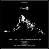 Andy Lee - What We Do (Original Mix)