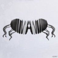 Nandu, Markus Nyberg - Lightning (Modular Project Remix)