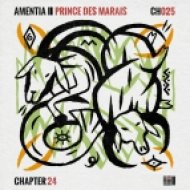 Amentia - Prince Des Marais (Original Mix)