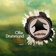 Ollie Drummond - The Touring Organism (Original Mix)