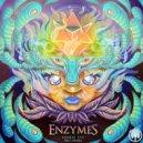 Enzymes & Twiggie Smallz - Mind, Body & Soul  (Original Mix)