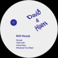 David & Hjalti - Moods (Original Mix)