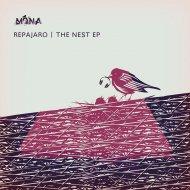 Repajaro - Nai No Nain 909 (Original mix)