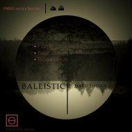 Ballistic - Recent Places  (Original Mix)