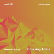 Stereo Positive - Crossing Africa  (Original Mix)