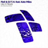 FloE & DJ T.H. feat. Kate Miles - Like A Miracle (Denis Kenzo Dub Mix)