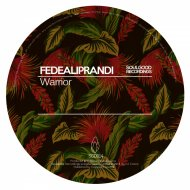 FedeAliprandi - Warrior (Original Mix)