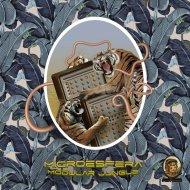 Microesfera  - Ambient Solarization  (feat. Bruno De Vincenti)
