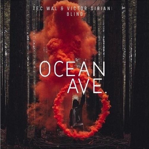 Tec Wal, Victor Siriani - Blind (Original Mix)