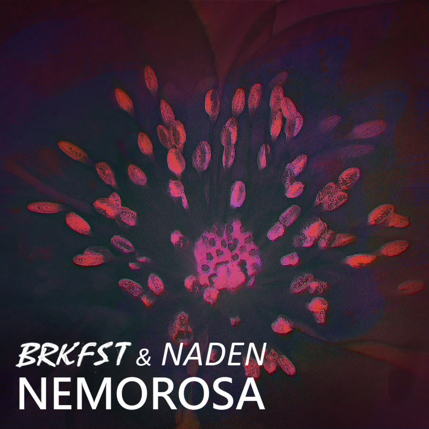 Breakfast  &  Naden  - Nemorosa (BRKFST Remix)