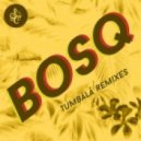Bosq feat. Danielle Moore - Because You (Caserta Remix)